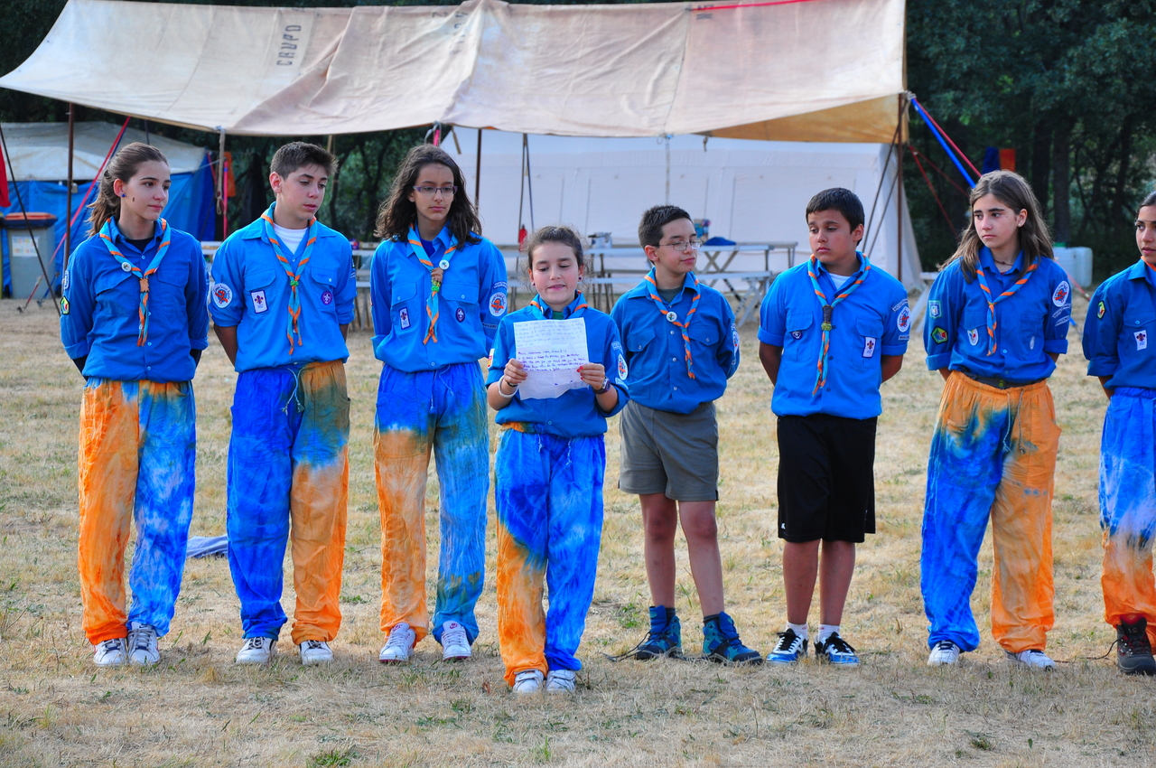 scout2013-01